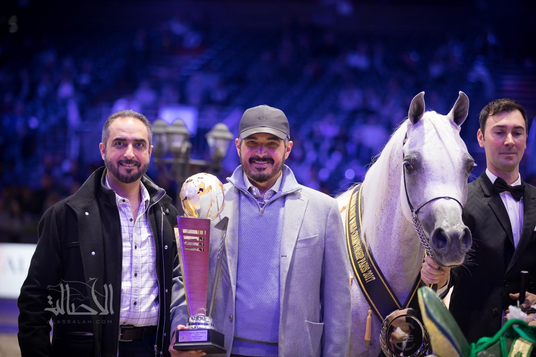 World Champion Senior Mare 2017