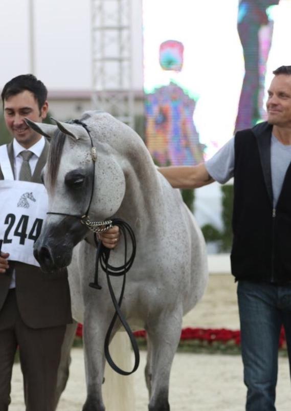 Fazea Al Zobair - Silver Champion Sharjah Local Bred Festival