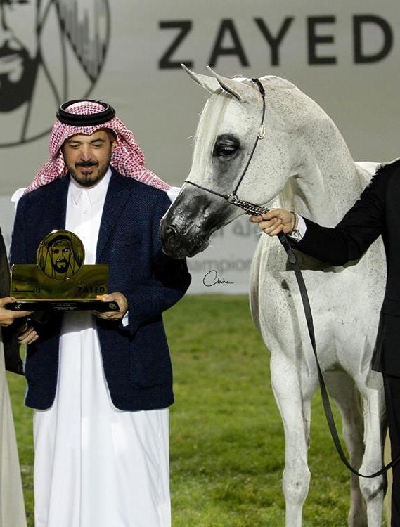 UAE National Championship - Power of Pistoria